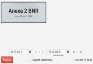 Raport Anexa 2 BNR_1